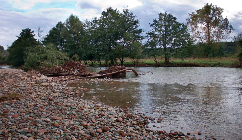 Arsenic Contamination of Ogosta River/Замърсяване на р. Огоста с арсен